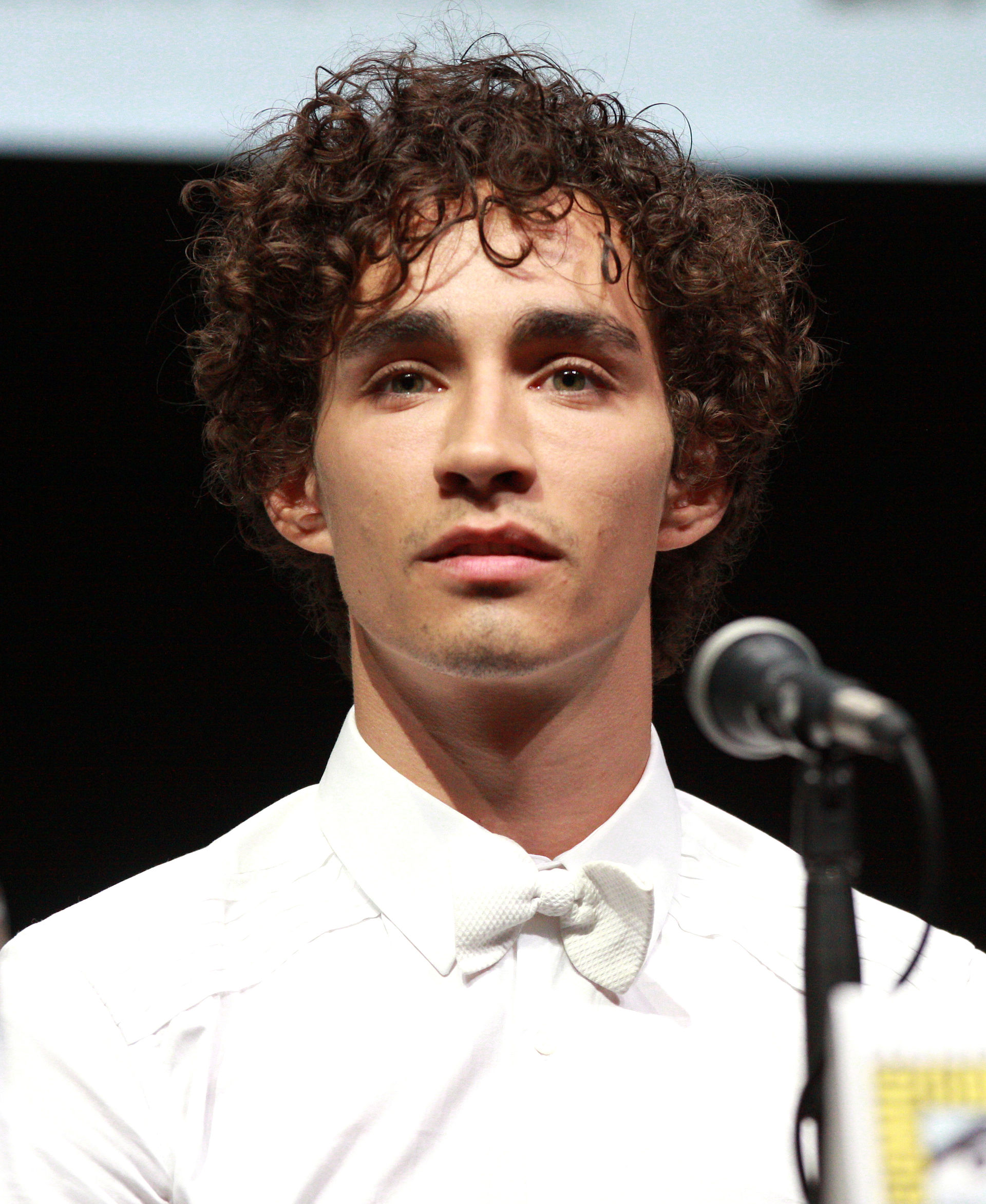 Robert Sheehan - Wikipedia