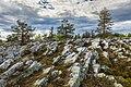 Rock surface formations on Kivitunturi, Savukoski, Lapland, Finland, 2021 June.jpg