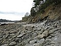 Rocky beach, Durgan village - geograph.org.uk - 746624.jpg