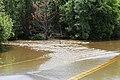 Roman Forest Flood, 4-19-16 at 2-30 PM (25924346414).jpg