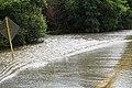 Roman Forest Flood - 4-18-16 (26512245185).jpg