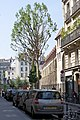 Rue de Poissy 2, Paris June 2010.jpg
