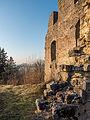 Ruine-Rauheneck-270216-2278388.jpg