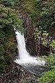 Ryujin Falls (Yakushima) (4485967046).jpg