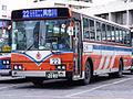 Ryukyu-Bus-HT.JPG
