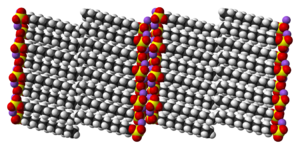 Space-filling model of the sodium dodecyl sulfate crystal