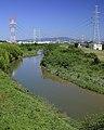 Sakai River, Ano-cho Toyoake 2013.JPG