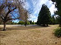 San Vernon Park.jpg