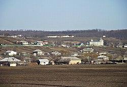 Satul Gura Galbenei - panoramio.jpg