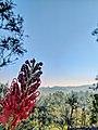 Scenic view from Bandarawela, Sri Lanka.jpg