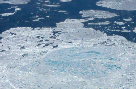Aerial photograph showing a section of sea ice. The lighter blue areas are melt ponds and the darkest areas are open water, both have a lower albedo than the white sea ice. The melting ice contributes to ice-albedo feedback. Sea Ice MeltPonds.png