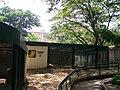Seccion felinos Zoo Maracay.jpg