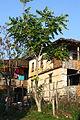 Selo Volkovija - Tetovsko (54).JPG