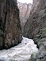 Sheep Creek Idaho.jpg