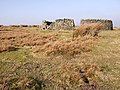 Sheepfold on Cowbyers Fell - geograph.org.uk - 693156.jpg