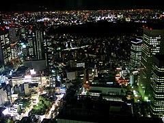 Shinjuku night skyline.jpg