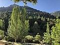 Sierra de Castril (44059015635).jpg