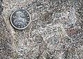 Sillimanite Crystals - geograph.org.uk - 746197.jpg