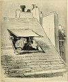 Skämtbilden och dess historia i konsten (1910) (14762370274).jpg