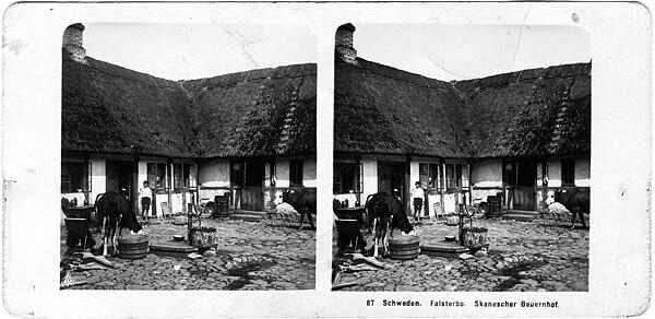 Århundredeskiftet 1900 var stereofotograferingens storhedstid, Skånsk landbrugsgård, Falsterbo, i 1913 eller tidligere