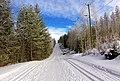 Ski track Jyväskylä 2.jpg
