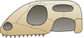 Skull squamata.png