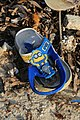 Slippers on the beach of Bantayan 31 sp.jpg