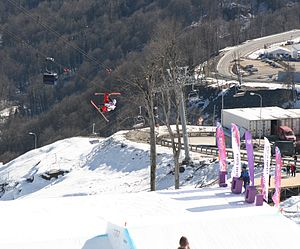 Freestyle skiing at the 2014 Winter Olympics – Men's slopestyle - Men's slopestyle at the Rosa Khutor Extreme Park. Winter Olympics 2014.