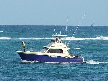English: Small sport fishing boat (AlleyCat)