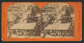 Snow's Hotel, Yosemite Valley, California, by Reilly, John James, 1839-1894 3.png