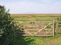 Solway marshes at Carndurnock - geograph.org.uk - 206477.jpg