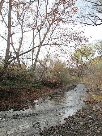 Sonoita Creek - Sonoita Creek, facing downstream from Salero Road.