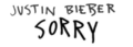 Sorry logo.png