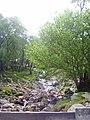 Sourmilk Gill taken from a small wooden bridge - geograph.org.uk - 451699.jpg