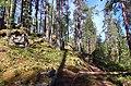 Southern Konnevesi National Park 2.jpg