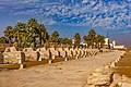 Sphingenallee Luxor.jpg