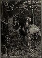 St. Nicholas (serial) (1873) (14593024750).jpg