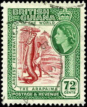 Queen of Guyana - Elizabeth II on a British Guiana stamp, 1954