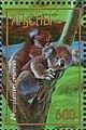 Stamp of Abkhazia - 1997 - Colnect 1000116 - Phascolaretos cinereus.jpeg
