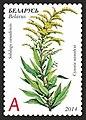 Stamp of Belarus - 2014 - Colnect 487995 - Canada Goldenrod Solidago сanadensis.jpeg