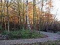 Stanley Marsh Nature Reserve - geograph.org.uk - 1052609.jpg