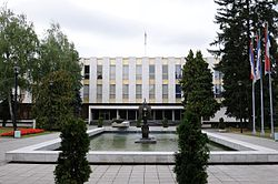 Stari dom jna - narodna skustina RS.JPG