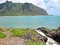 Starr-050419-6535-Panicum fauriei var carteri-habitat-Mokolii-Oahu (24378589879).jpg