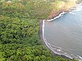Starr-141014-2223-Caesalpinia decapetala-aerial view at coast-Kakipi Gulch Haiku-Maui (24951664780).jpg
