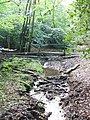 Stream at Severell's Copse - geograph.org.uk - 575614.jpg