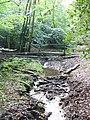 Stream at Severell's Copse - geograph.org.uk - 575614.jpg