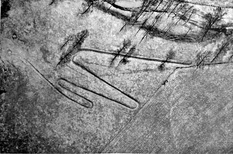 """Stubbs Earthworks - Aerial view of the """"W"""" taken in 1951"""