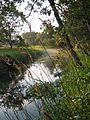 Sugar River - Donald Park - Wisconsin.jpg