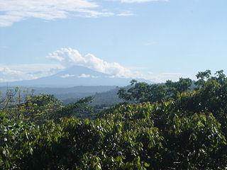 Eastern Cordillera Real montane forests