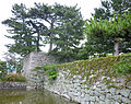Sumoto Castle 27.jpg